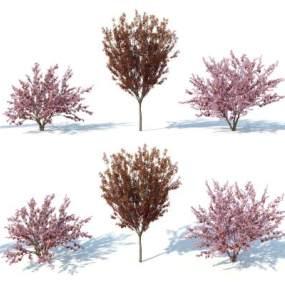 现代灌木3D模型【ID:249240829】