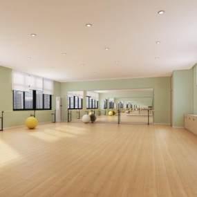 现代儿童舞蹈室3D模型【ID:835778720】