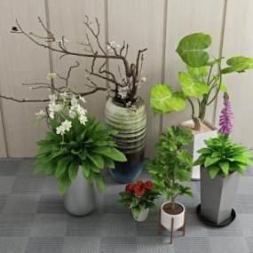 现代植物盆栽3D模型【ID:236276860】