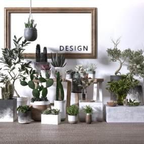 北欧绿植盆栽组合3D模型【ID:250971853】