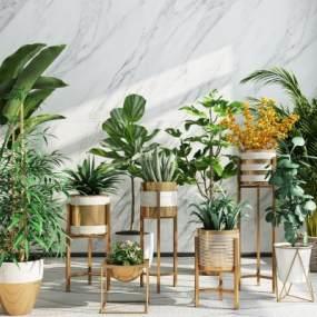 现代阳台绿植盆栽摆件组合3D模型【ID:233753869】