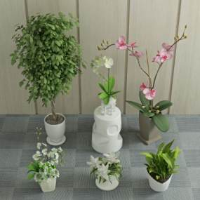 现代盆栽植物3D模型【ID:233208847】