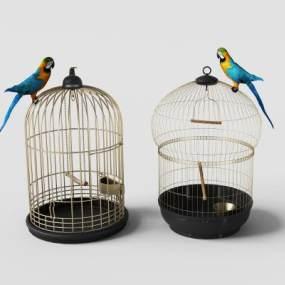 美式鸟笼装饰与鹦鹉摆件组合3D模型【ID:632104398】