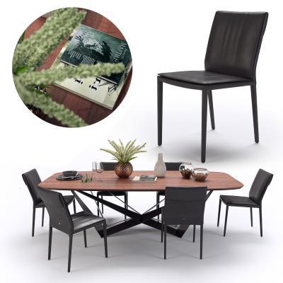 现代长形餐桌椅3D模型【ID:843692825】