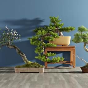 现代植物盆栽3D模型【ID:233030824】