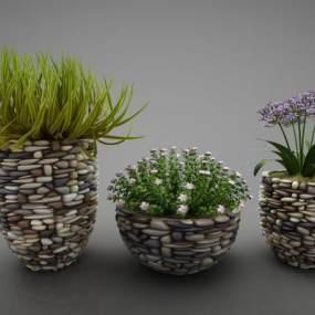 現代風格植物3D模型【ID:250534820】