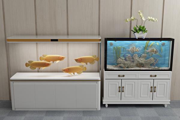 现代生态鱼缸3D模型【ID:336250686】