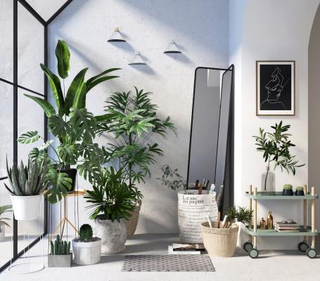 现代植物盆景3D模型【ID:245936843】
