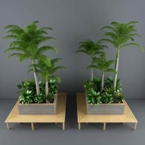 花坛绿化花槽隔断酒店植物椰子树植物花箱花架3D模型【ID:730495574】