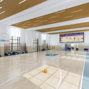 現代室內校籃球場3D模型【ID:648037956】
