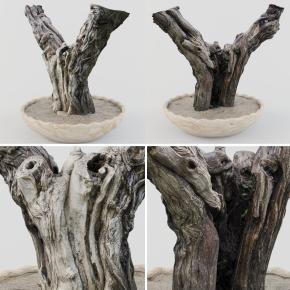 現代枯樹藝術盆景根雕3D模型【ID:327784836】