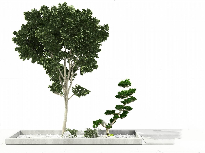 树3D模型【ID:320021615】