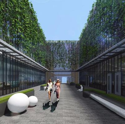 室外庭院 现代建筑 室外 绿植 室外椅子