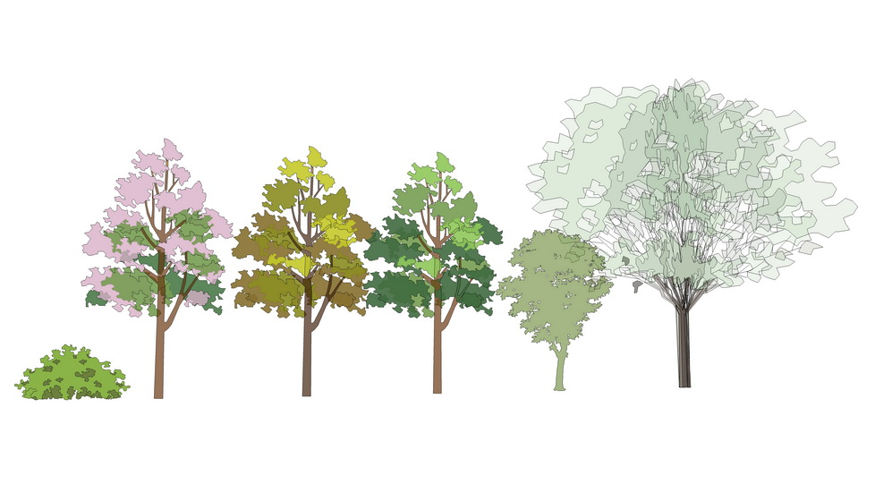 2D水彩树组合SU模型
