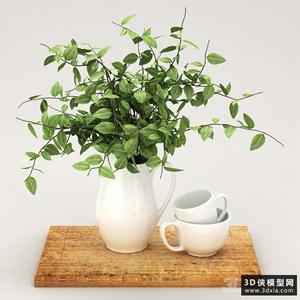 装饰植物组合