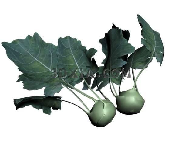 蔬菜3D模型下载