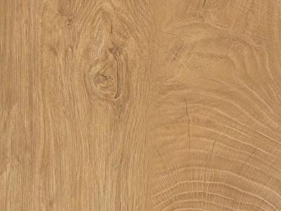橡木木纹 年轮纹理