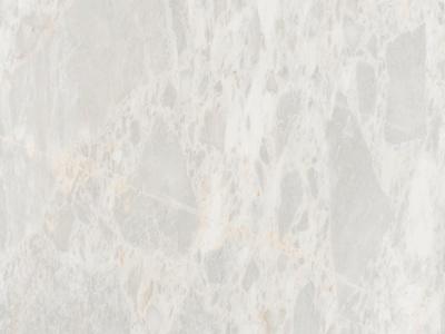 米洛西豹纹白大理石