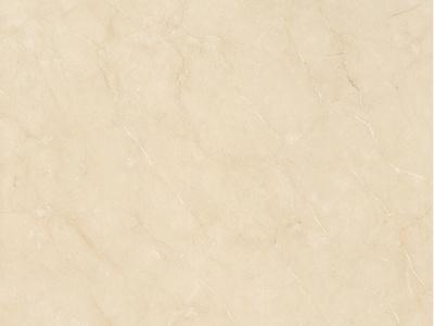 伊朗莎安娜 瓷砖