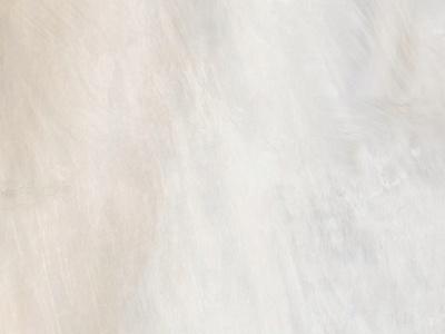 卡萨诺贝壳羽大理石