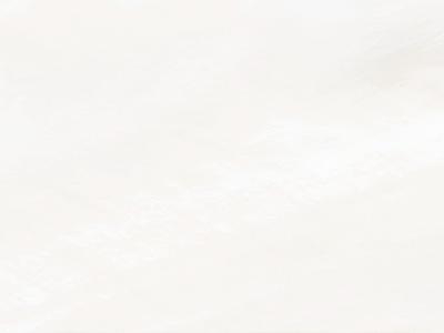 现代卡萨诺贝壳羽大理石