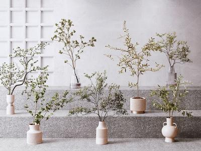 現代水生植物 吊鐘 花瓶 盆栽