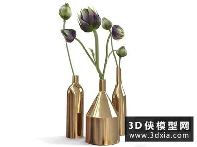 装饰植物花