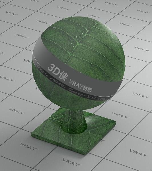 绿色树叶Vray材质下载