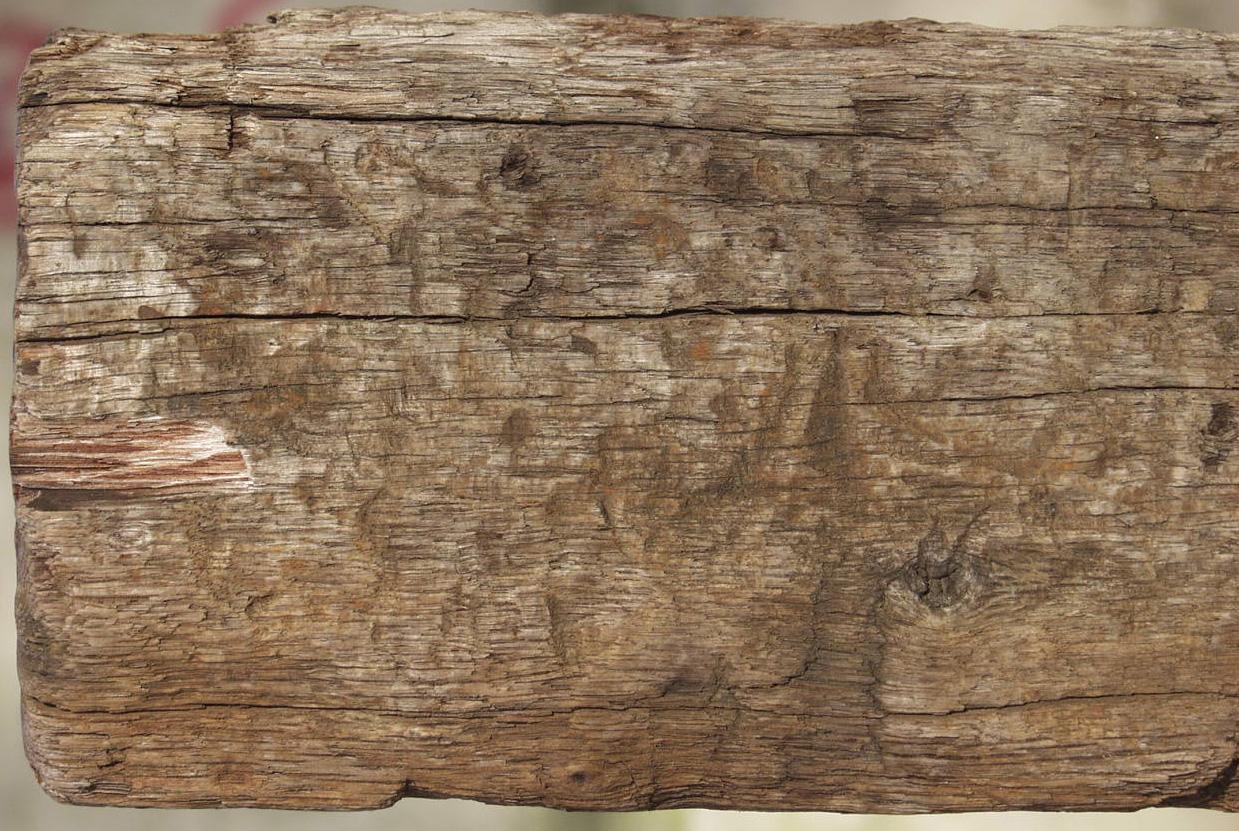 木材-残旧木(11)