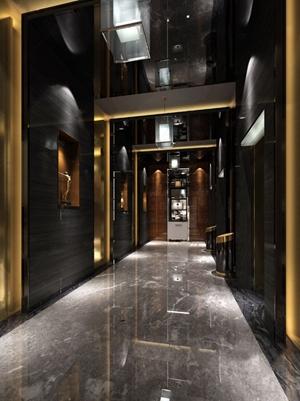 現代電梯廳過道 現代過道 電梯間 裝飾柜 垃圾桶 電梯 吊燈
