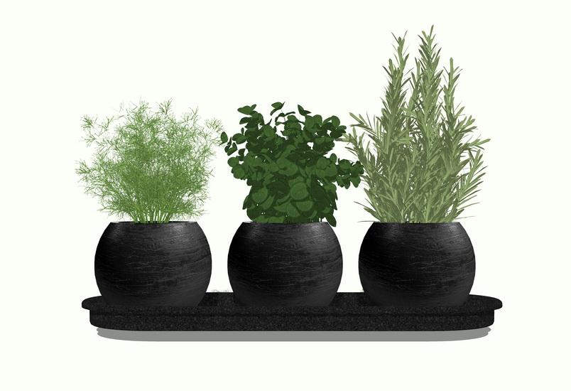 室内盆栽SU模型