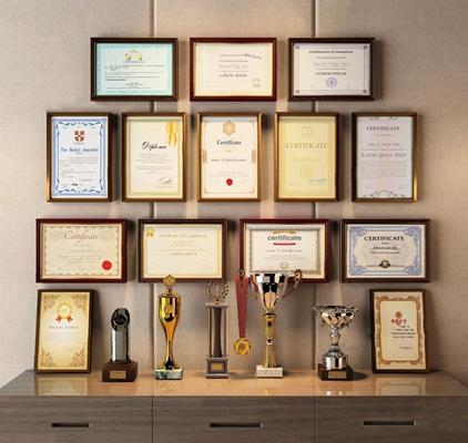 奖状荣誉证书奖杯组合 现代摆件 奖状 奖书 奖牌 奖杯 证书 荣誉证书