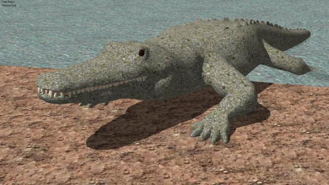 三维的鳄鱼 非洲鳄鱼 美国短吻鳄