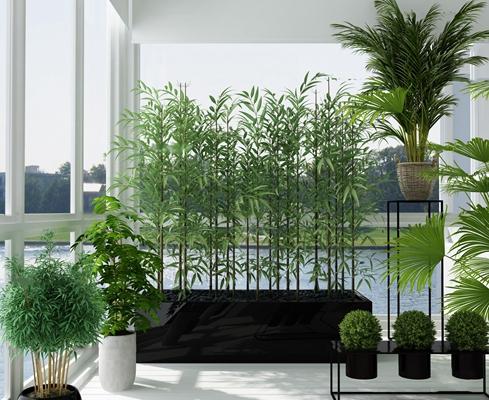 现代竹子绿植盆景组合3D模型