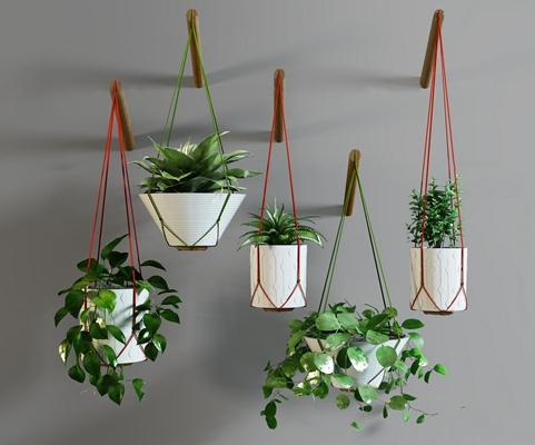 现代绿萝吊篮盆栽组合3D模型