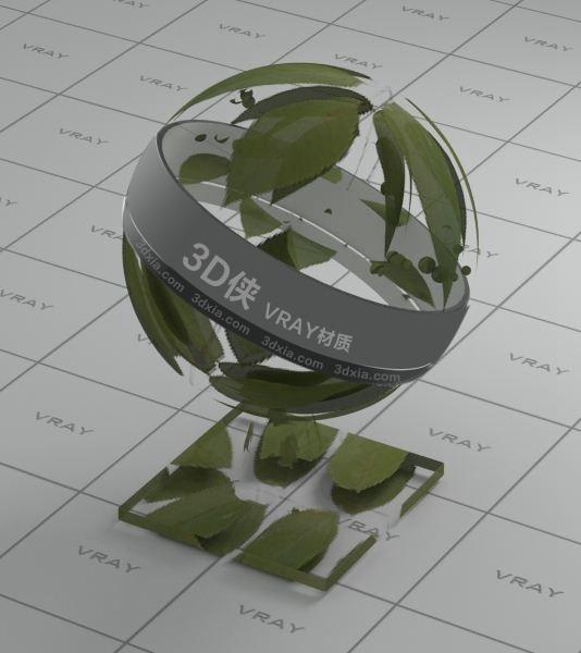 树叶Vray材质下载