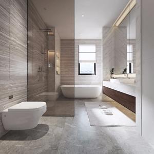 现代卫生间 现代卫浴 马桶 台盆 浴缸 淋浴间 卫浴柜