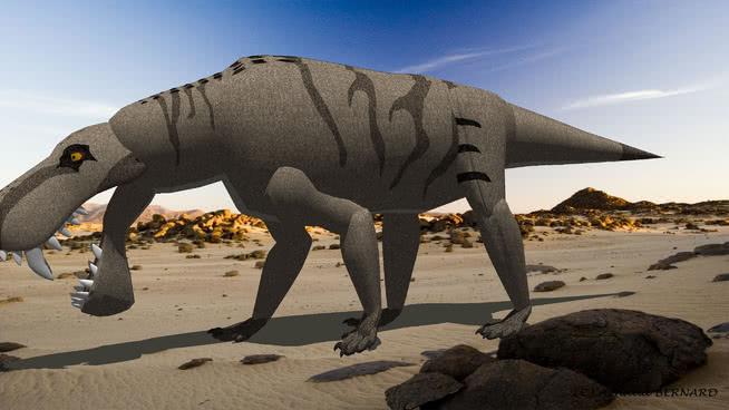 亚历山大 三角龙 马 非洲大象 动物 阿拉伯骆驼