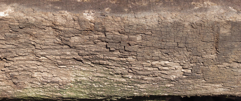 木材-残旧木(150)