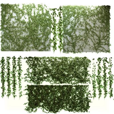 现代爬山虎绿植藤蔓3D模型