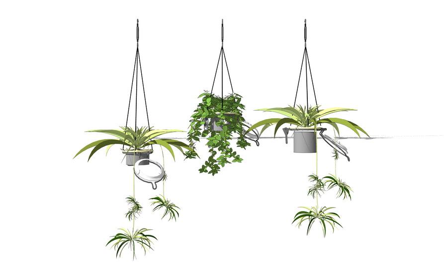 室内盆栽吊篮SU模型