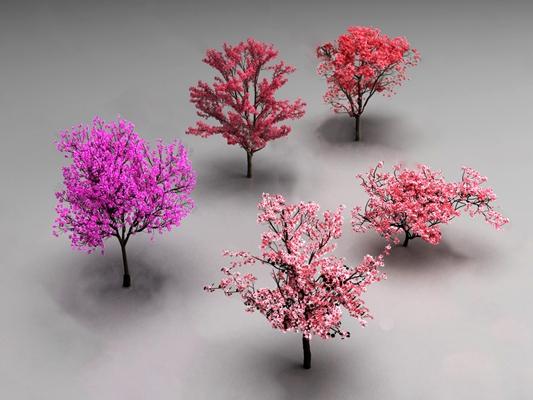 现代樱花树3D模型