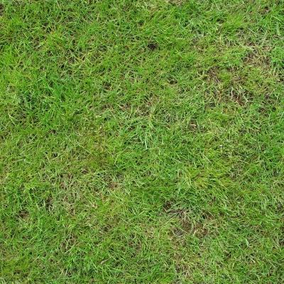 现代草地3D模型