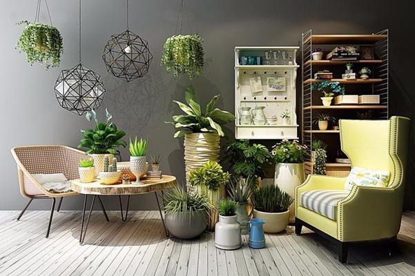 阳台花房植物花架组合 北欧单椅 桌几 吊灯 装饰架 绿植 盆栽 花架