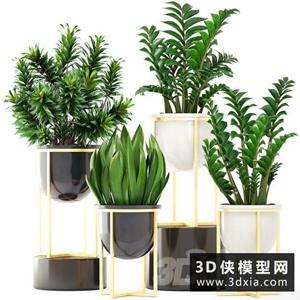 现代植物绿植盆栽花盆组合
