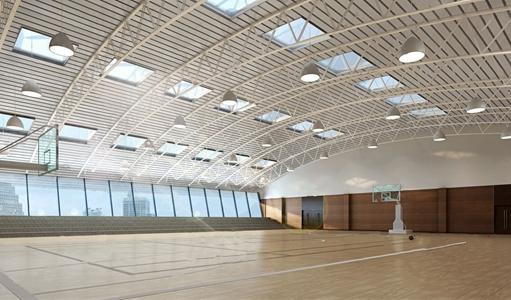 现代篮球场 现代学校 篮球场 绗架 钢结构 篮球架 吊灯