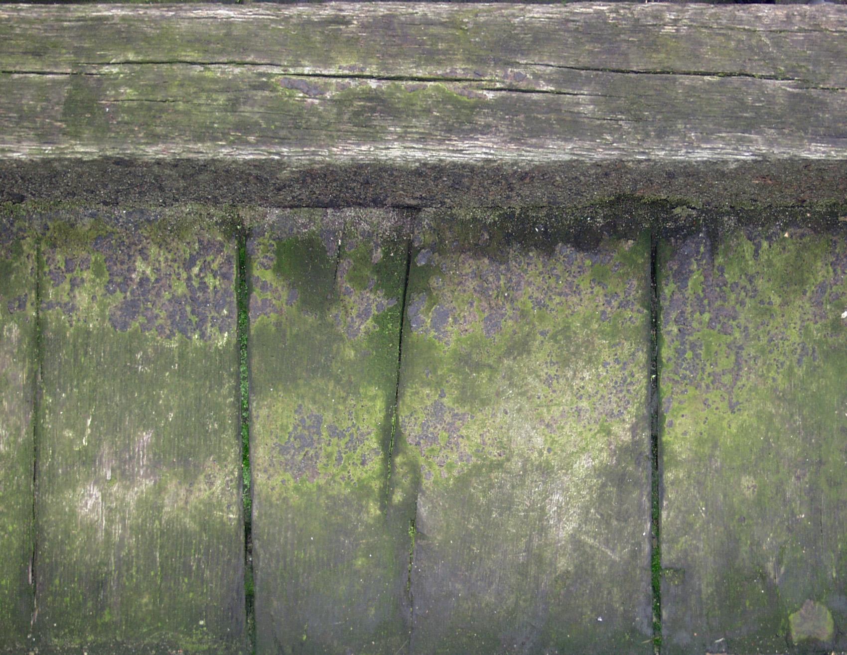 木材-残旧木(49)