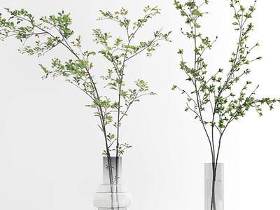 现代绿植花瓶花艺3d模型
