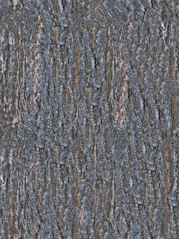 木纹木材-树皮 056