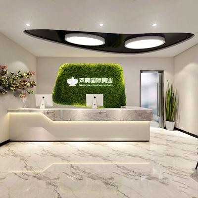 现代风格美容院前台 娱乐会所 spa会所 前台接待 过道 单椅 边几 植物墙 植物